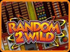 Random2Wild